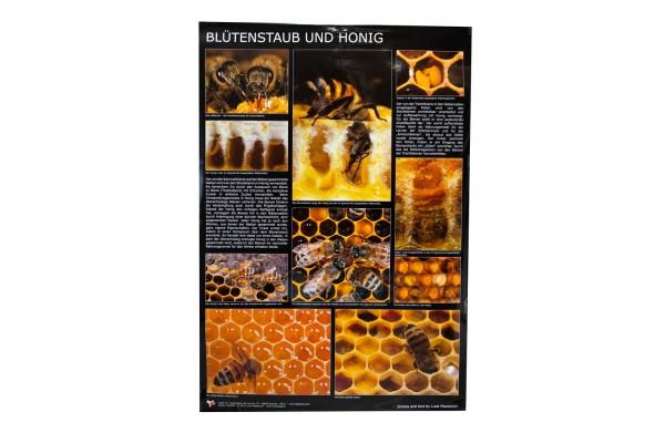 Poster Blütenstaub und Honig
